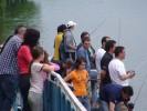 <a>Снимка от </a>Русе 15-16.05.2010г.